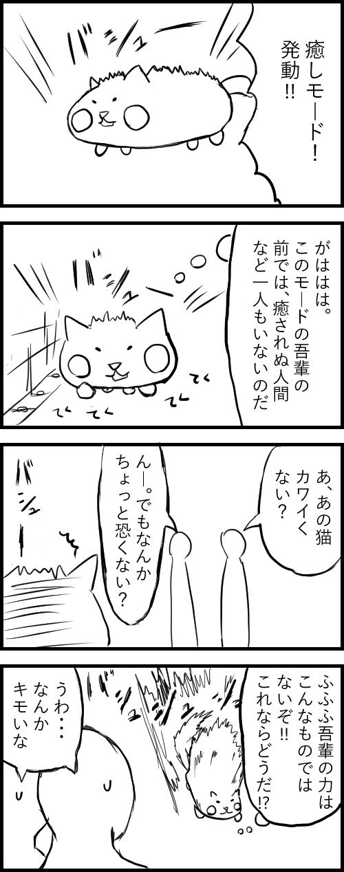 癒しの猫_3